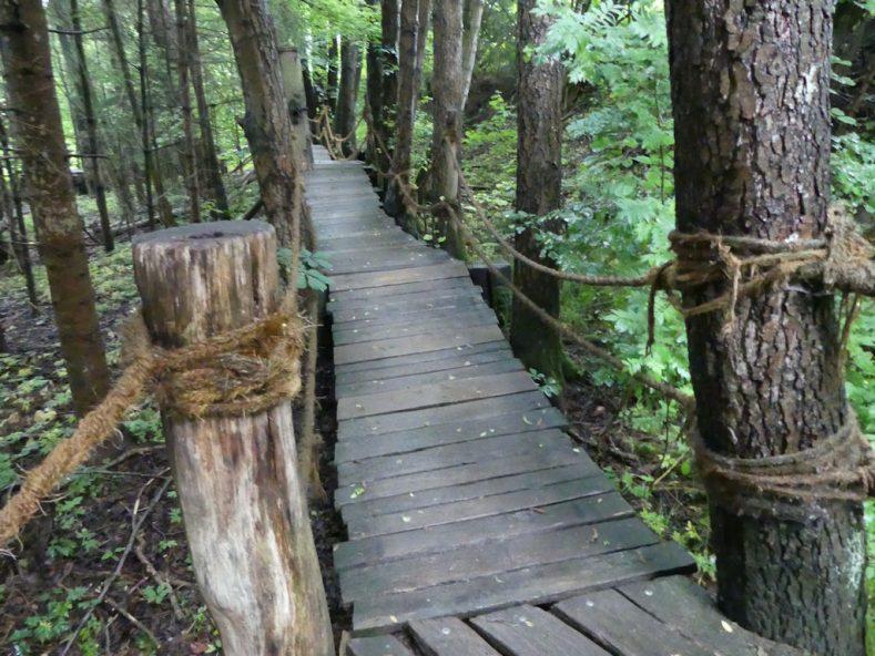 Ausflugstipps in und um Furth im Wald