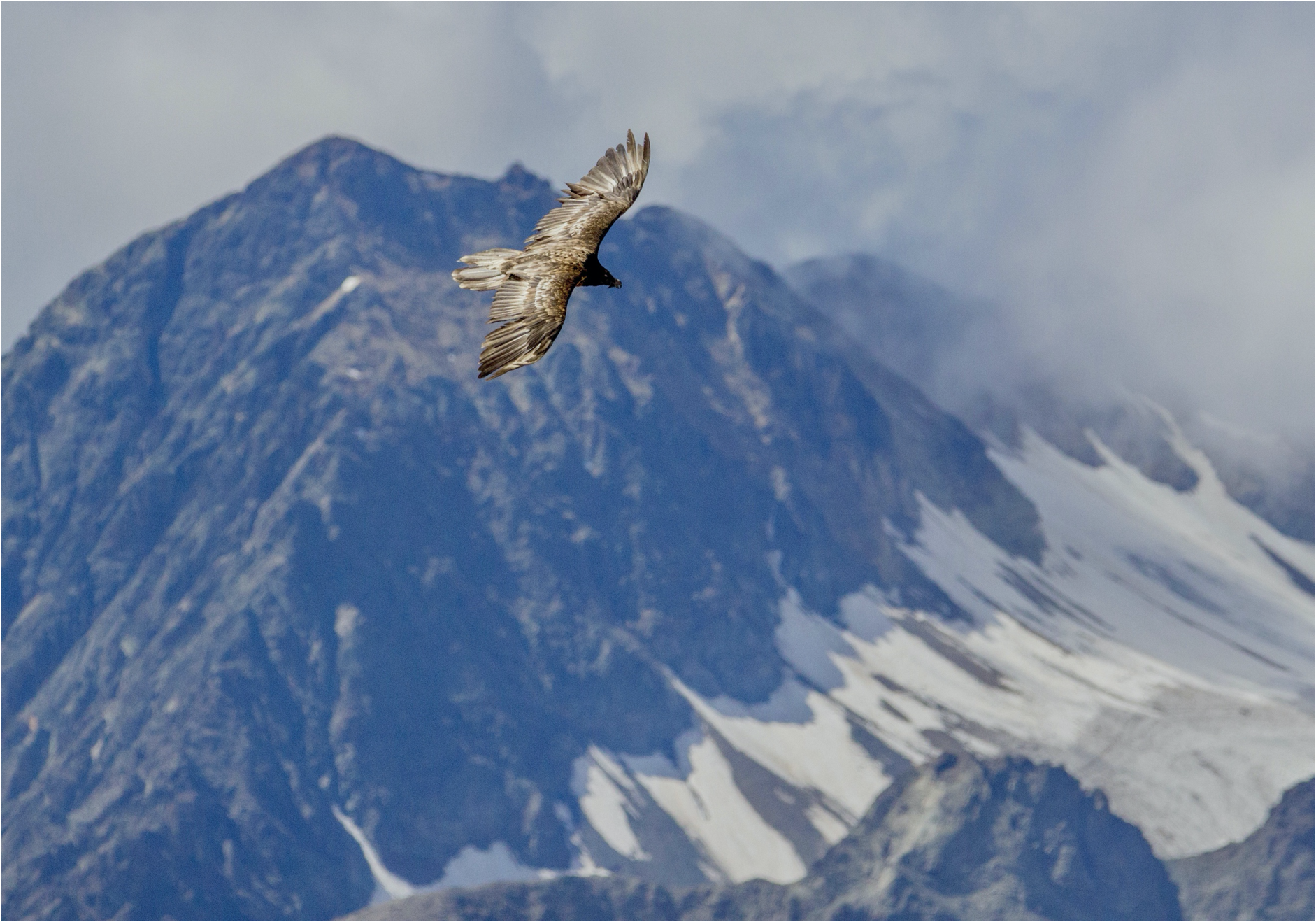 Eine Wanderung rund um den Igl Compass (3017 Meter) in Graubünden