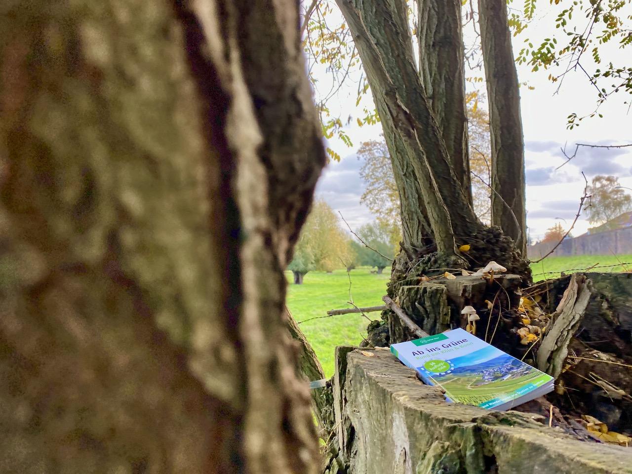 Buchvorstellung: Ab ins Grüne – 36 Ausflugsziele rund um Köln & Bonn