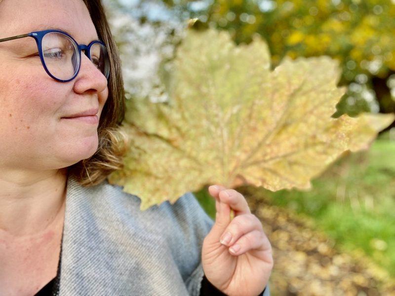 Janett sucht nach schönen Bildern vom Herbst