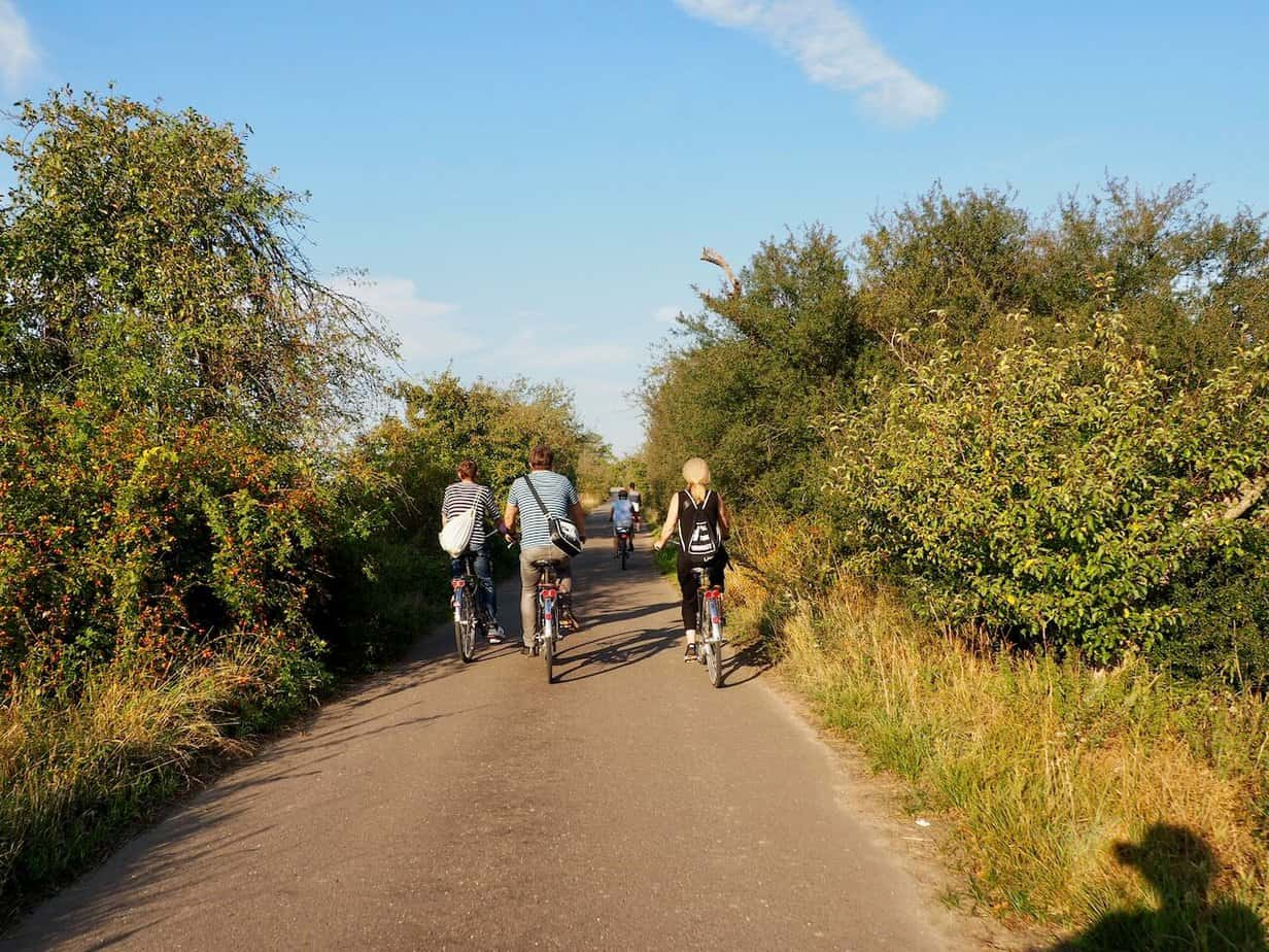 Radtour Elberadweg Obstbäume