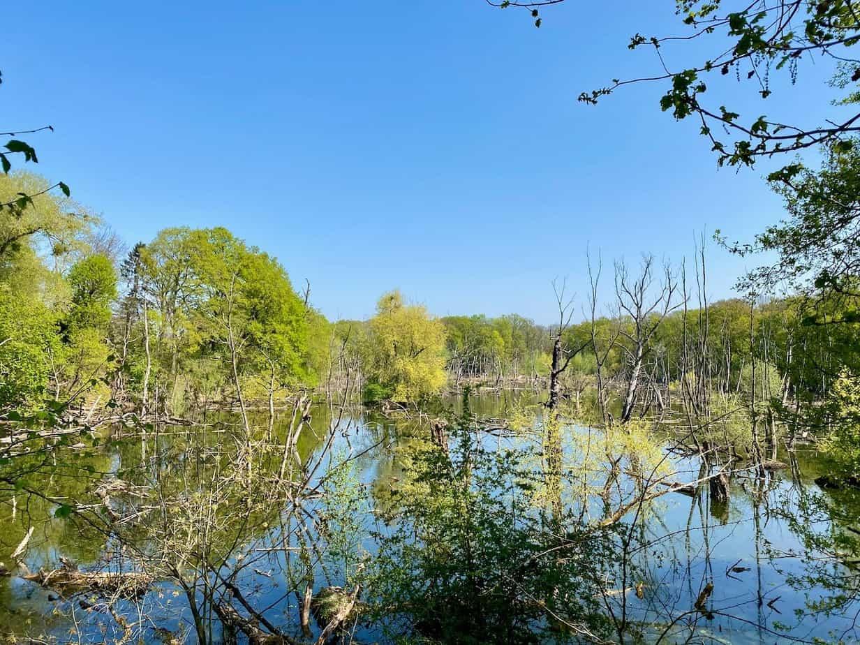 Groovsches Loch Neuss