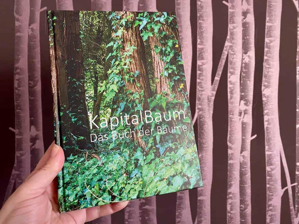 Kapital Baum Ulrich Kronberg