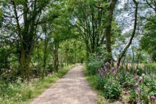 Tagesausflug NRW: 14 spannende und kostenlose Sehenswürdigkeiten
