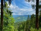 Mittlerer Schwarzwald: Ausflugsziele im Kinzigtal