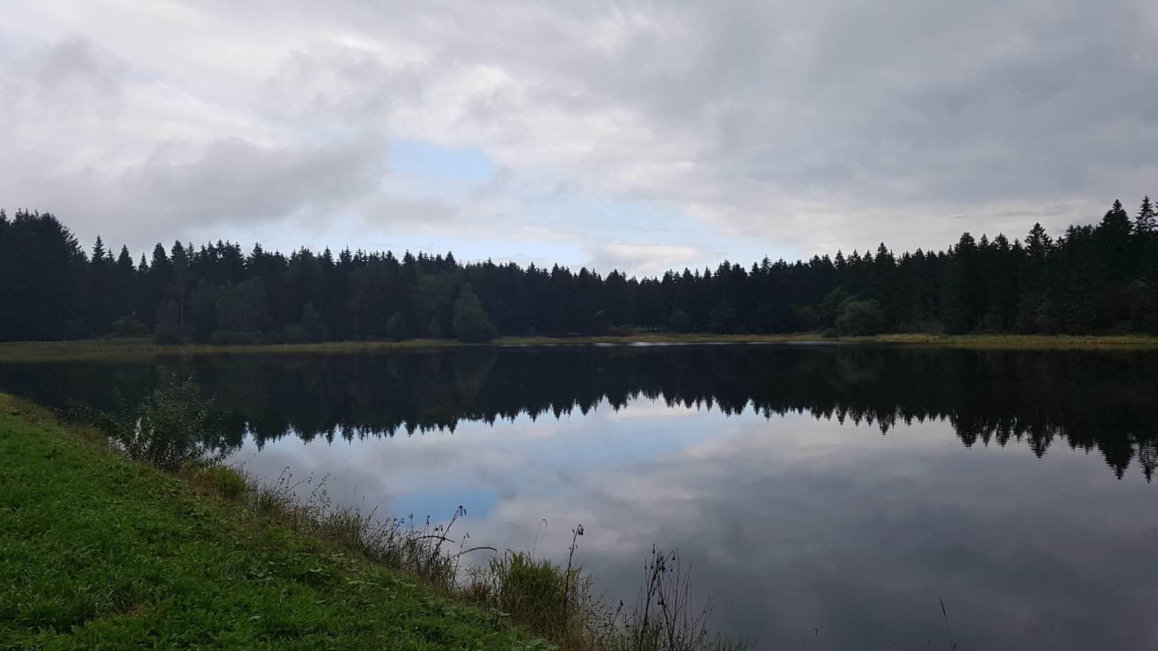 Oberharzer Wasserregal